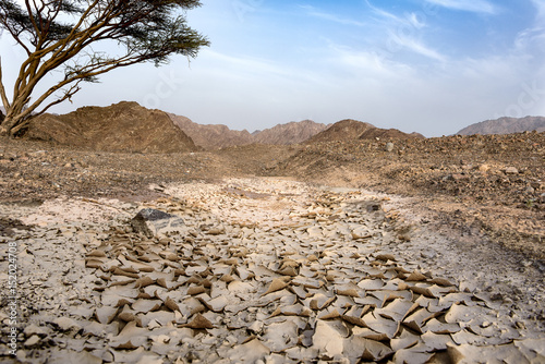 Poster Beautiful Landscape view of Wadi in Sharjah