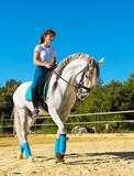 riding woman on stallion