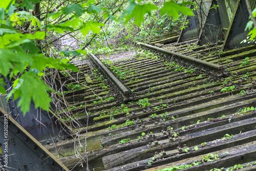 Tuinposter Spoorlijn Verwildertes Totes Gleis einer alten Bahnstrecke