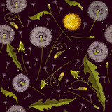 Dandelions embroidery seamless pattern. Beautiful dandelions classical embroidery seamless background, template for clothes and textiles - 152041510
