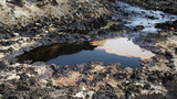 Former dump toxic waste, oil lagoon contamination. Nature effects from water and soil contaminated with oil and chemicals, environmental disaster, contamination of the environment, Moravia, Europe - 152042344