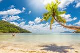 Tropical beach in Caribbean sea.