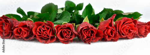 Wet red roses background for Mother's day