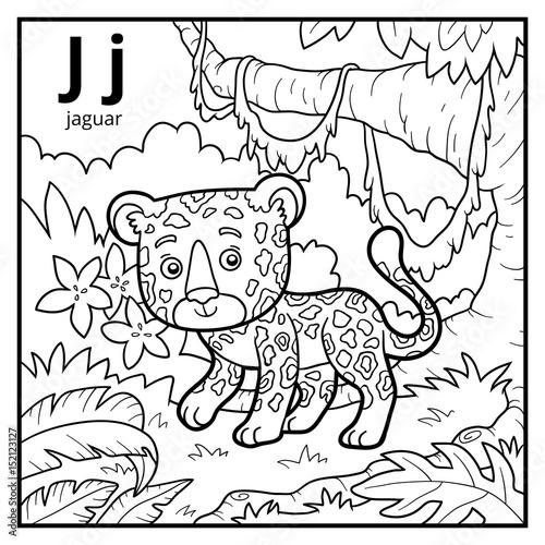 Plexiglas Zoo Coloring book, colorless alphabet. Letter J, jaguar