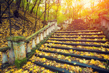 Park at sunrise. Stairways covered with fallen leaves
