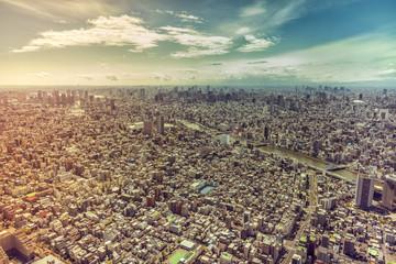 Tokyo skyline panorama, aerial view, Japan. Vintage colors with light leaks