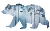 bear - 152323567
