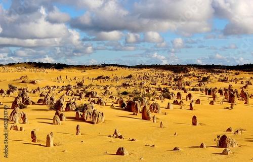Désert des pinnacles, Australie Occidentale Poster