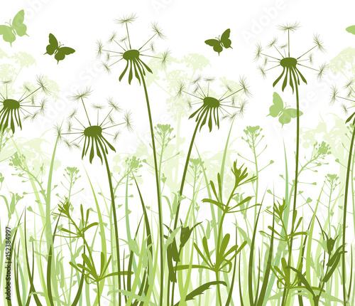 Fototapeta Seamless floral background