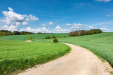 Spring landscape with dirt road and green fields - 152417743
