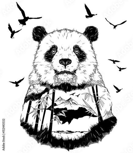 Fototapeta Vector Double exposure, Hand drawn panda partrait
