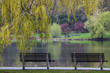 Quiet rainy spring day at the park.