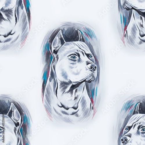 Seamless pattern of a beautiful dog on a white background. - 152586146