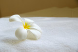 Close up White Frangipani flowers on white towel