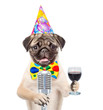 Dog in party hat holding retro microphone and wineglass. Isolated on white background