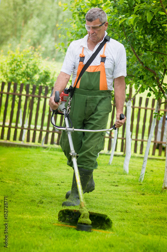 Póster Cutting grass in garden with the trimmer