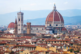above view of Cathedral in Florence city