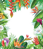 Tropical plants and flowers - 152808505