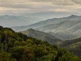 Green misty mountain landscape