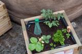 carrés de jardin en ville