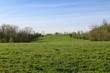 The green grass field landscape .