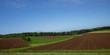 Farmland on Prince Edward Island Canada