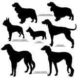 Dog silhouettes set - outline and silhouette vector