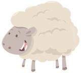 farm sheep animal - 153229949