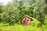 Traditional icelandic house with green turf roof in a forest.