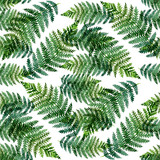 Tropical watercolor abstract pattern with fern leaves
