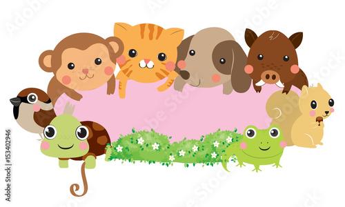 Animals label design