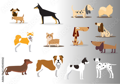 dog icons collection various colored types ornament