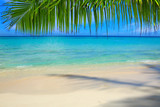 Caribbean sea and palm leaves. - 153499711