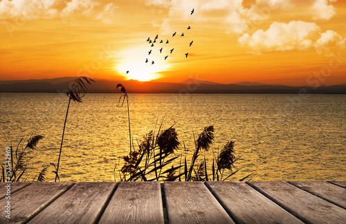 Canvas Honing el mar dorado por el sol