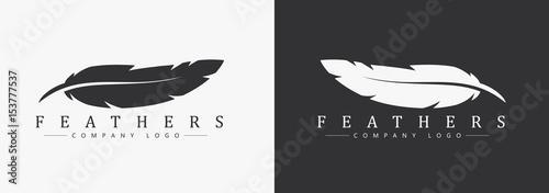 Projekt logo z piórkiem i nazwą firmy, dla pisarza lub wydawców.