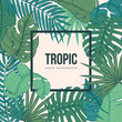 Tropic leaves background with frame for your text. Vintage texture.Eps10 vector.