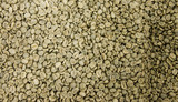 Roasted coffee beans Smooth focus image