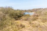 Meyendel Dunes in the spring