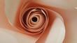Flowers Handmade Papercraft - 154263538