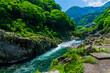 渓流と風景 日本 アジア