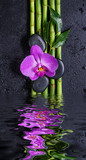 Fototapeta Kwiaty - Stones, orchid flower and bamboo reflected in a water © epitavi