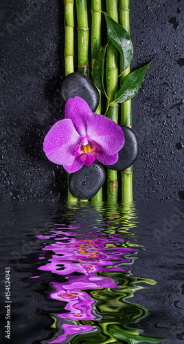 Stones, orchid flower and bamboo reflected in a water