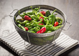 New Mexico Red and Green Chile Peppers