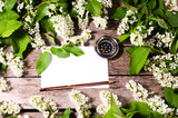 White sheet of paper, compass, pencil surrounded by the foliage of wild cherry