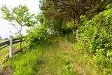 Ścieżka na szlaku turystycznym na skraju lasu