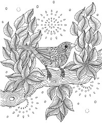 Red-billed fincher bird coloring page