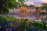 Pałac na Wyspie - Łazienki Królewskie. A Neoclassicist palace in Warsaw with a lot of flowers in spring. - 154693757