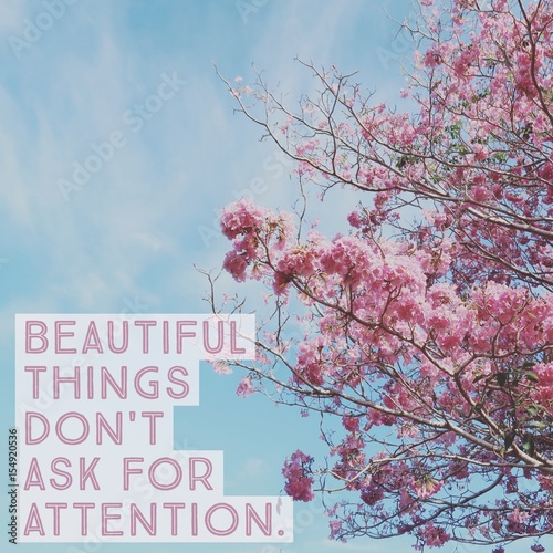 "Inspirational motivational quote ""beautiful things don't ask for attention"" on pink flower with blue sky Poster"