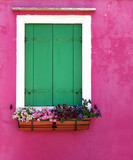 window with flowers on pink wall