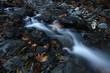 nature landscape and river - 155044936